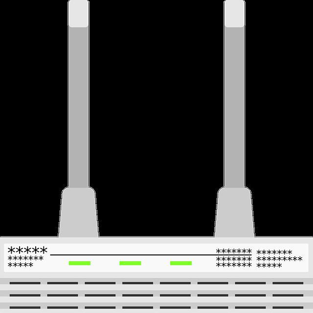 šedý router